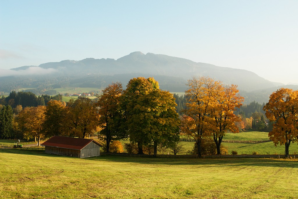 Halach im Schwarzwald