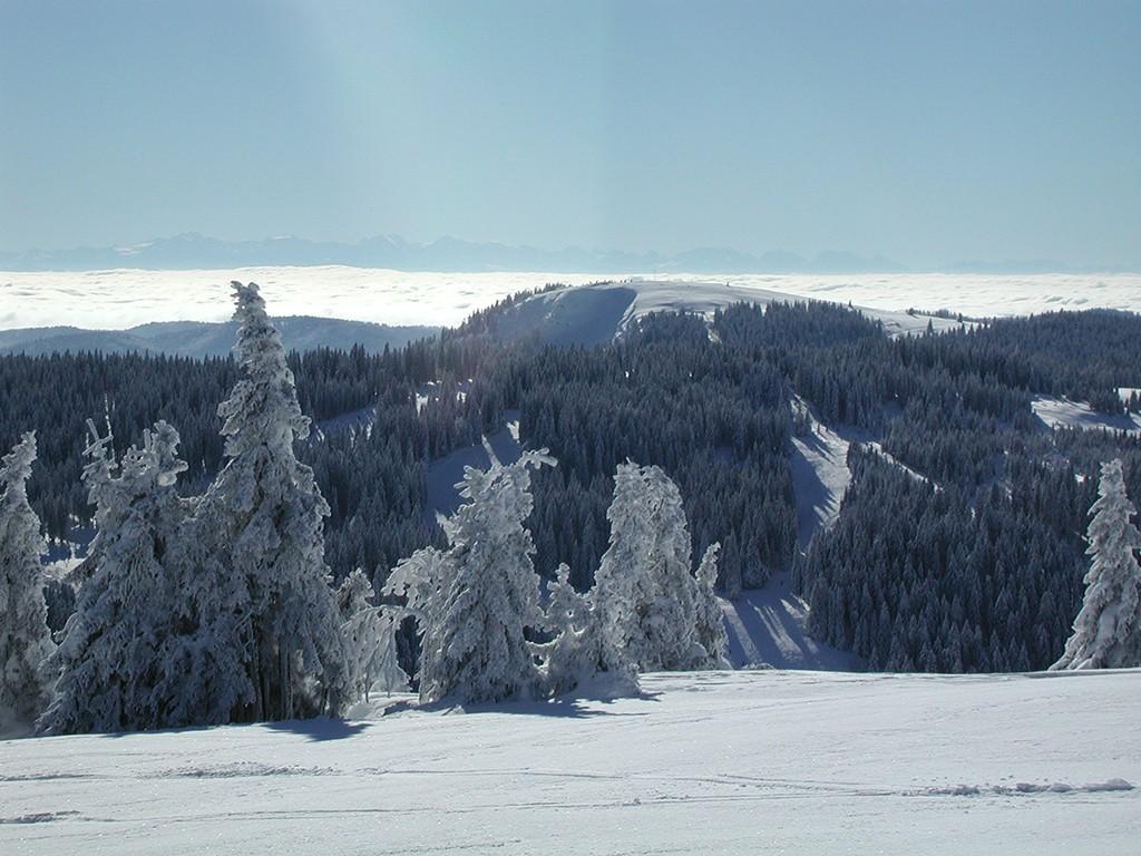 Südschwarzwald Herzoghorn