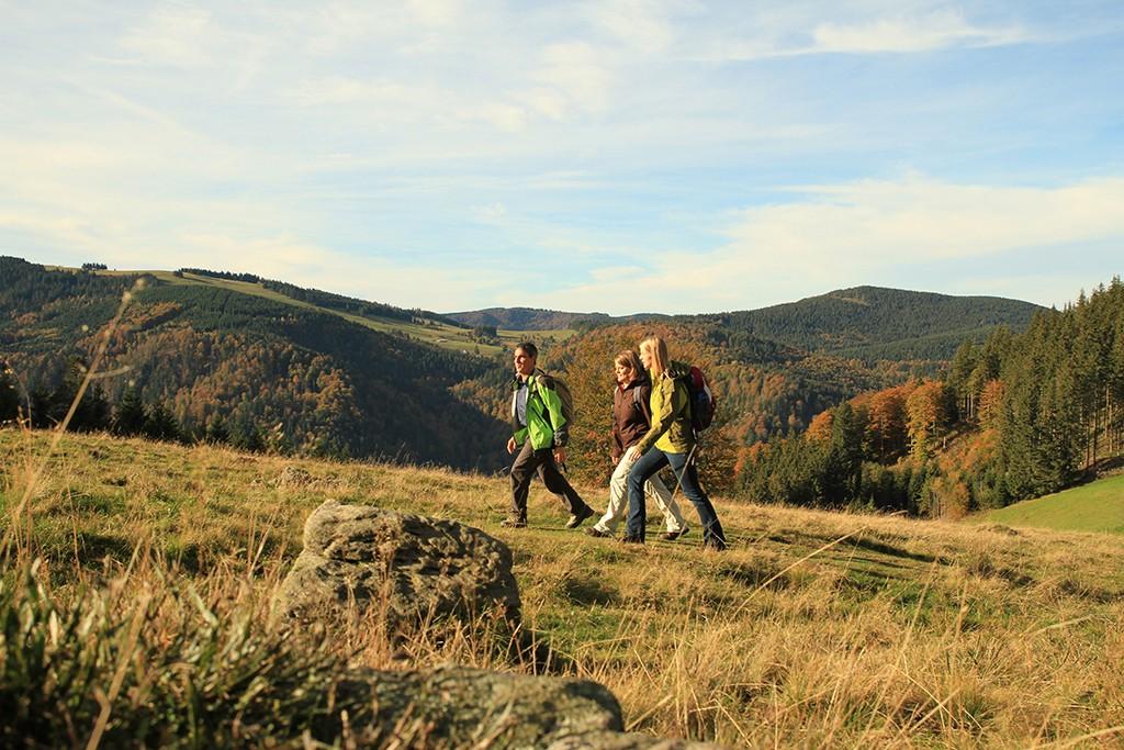 Wandern Schwarzwald
